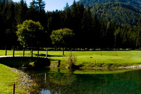 Golf near Dellach